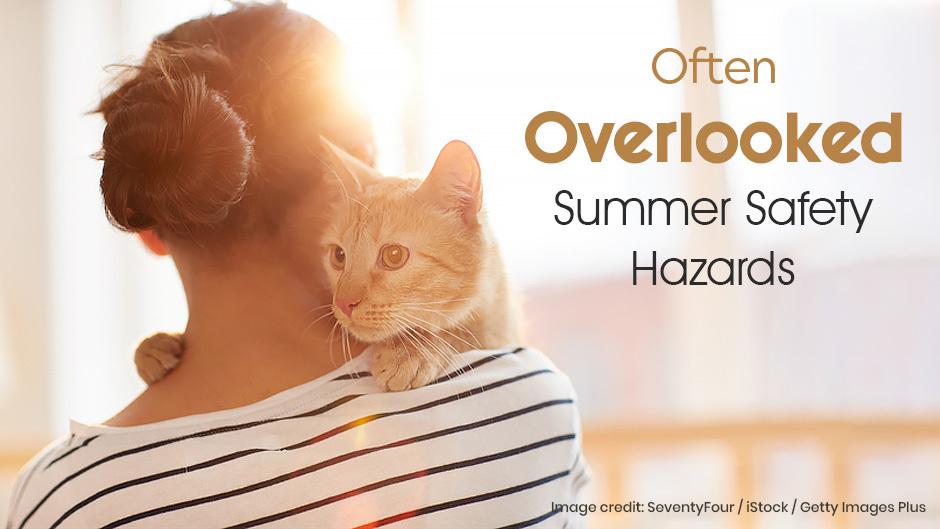 Summer Safety Hazards
